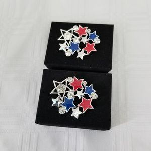 Americana Brooch Bundle